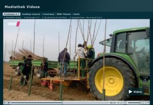 Sendung mit der Maus Sachgeschten Baumschule Teil 3