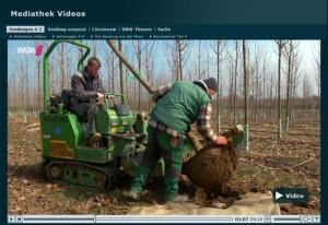 Sendung mit der Maus Sachgeschten Baumschule Teil 4