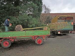 Der Grüne Weihnachtsmann